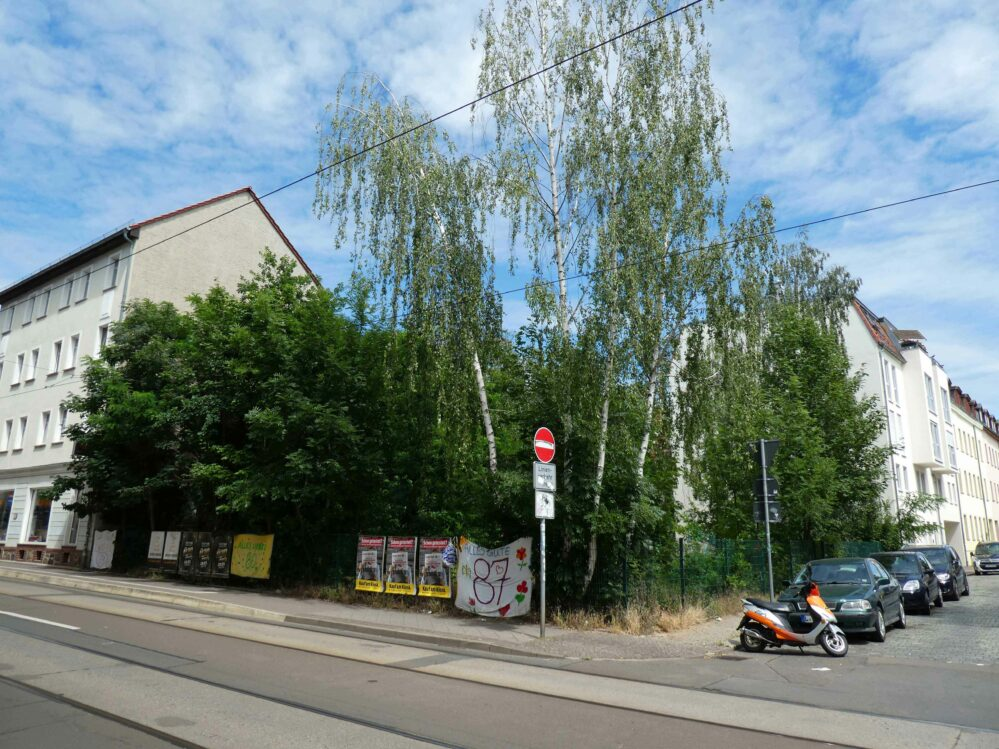Ein leerstehendes Grundstück mit Bäumen